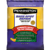 Pennington 1-lb Sun and Shade Grass Seed Mixture