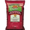Pennington Lawn Fertilizer