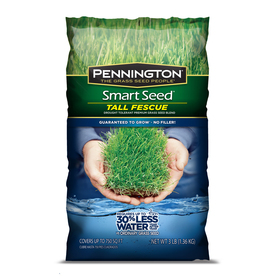 Pennington Smart Seed 3 lbs Sun and Shade Fescue Grass Seed Mixture