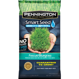 Pennington Smart Seed 7-lbs Sun and Shade Fescue Grass Seed Mixture