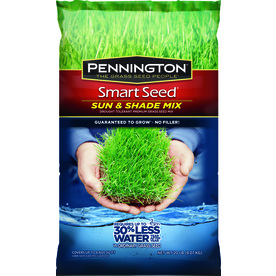 Pennington Smart Seed 20-lb Sun and Shade Ryegrass Seed Mixture