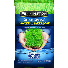 Pennington Smart Seed 3-lbs Sun and Shade Bluegrass Seed Mixture