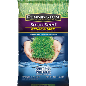 Pennington Smart Seed 3-lb Shade Fescue Grass Seed Mixture