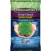 Pennington Smart Seed 3-lb Dense Shade Grass Seed