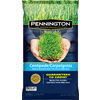 Pennington 3 lbs Sun Grass Seed Mixture