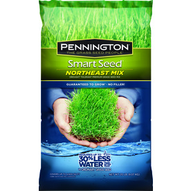 Pennington Smart Seed Northeast Mix 20-lb Sun and Shade Grass Seed