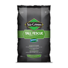Sta-Green 20-lb Dense Shade Grass Seed Tall Fescue Grass Seed