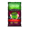 Pennington 1 Step Complete 20-lb Sun and Shade Grass Seed Patching