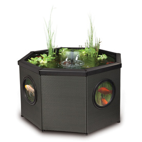 Shop pennington pond kit at for Koi pond kits lowes