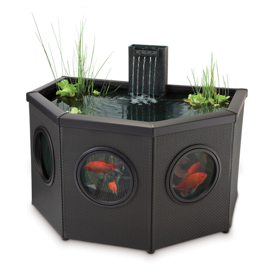 The gallery for indoor koi pond kit for Koi pond kits lowes