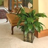  13 oz Peace Lily (L20977hp)