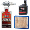 Briggs & Stratton Walk-Behind Mower Maintenance Kit