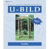 U-Bild Trellis Woodworking Plan