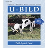 U-Bild Pull-Apart Cow Woodworking Plan