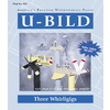U-Bild Three Whirligigs Woodworking Plan