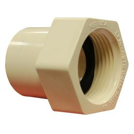 LASCO 3/4-in Dia Adapter CPVC Fitting