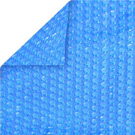 Aqua EZ 16-ft x 32-ft Plastic Solar Pool Cover