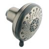 Moen Brushed Nickel Inspire 7-Spray Shower Massager