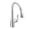 Moen Arbor 1-Handle Pull-Down Kitchen Faucet
