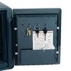 First Alert 0.94-cu ft Combo Safe