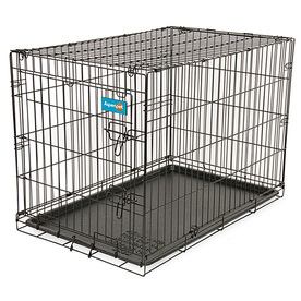 Aspen Pet 2-ft x 1.5-ft x 1.75-ft Black Collapsible Wire Pet Crate