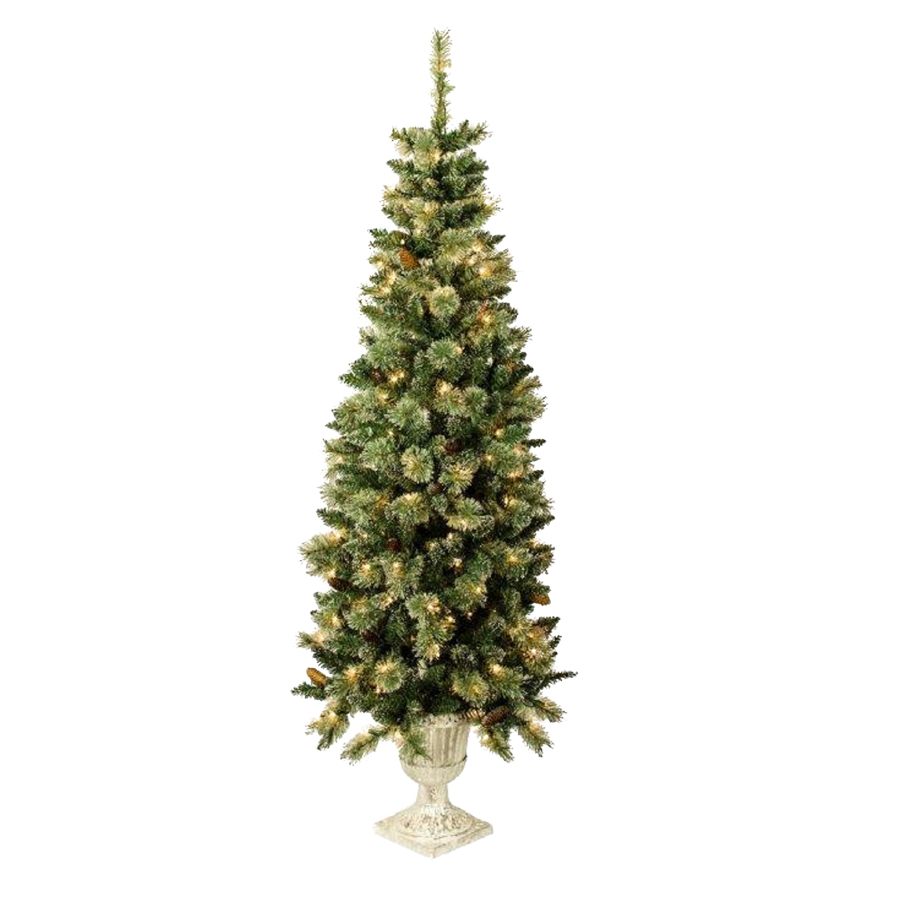 Shop holiday living 5 5 ft indoor outdoor pre lit spruce Outdoor christmas tree photos