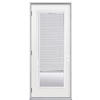 ReliaBilt 36-in Clear Outswing Entry Door