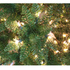 Holiday Living 4-1/2-ft Indoor/Outdoor Bristen Pine Pre-Lit Artificial Christmas Tree with 200-Count Clear Lights