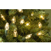 Holiday Living 25-Count White C7 Christmas String Lights