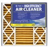 Flanders 20-in x 25-in x 5-in Pleated Air Filter