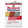 Thompson's WaterSeal Clear Multi-Surface Waterproofer