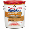 Thompson's WaterSeal 5-Gallon Sheer Honey Gold Waterproofer Plus Tinted Wood Protector