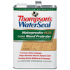 Thompson's WaterSeal 1-Gallon Clear Wood Protector Waterproofer Plus