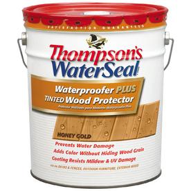 Thompson's WaterSeal Waterproofer Plus Tinted Wood Protector Sheer Honey Gold