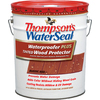 Thompson's WaterSeal Waterproofer Plus Tinted Wood Protector Rustic Red 5-Gallon