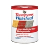 Thompson's WaterSeal ThompsonS Waterseal Clear Multi-Surface Waterproofer- Low Voc- 5 Gal