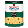 Thompson's WaterSeal Signature Clear Exterior Stain (Actual Net Contents: 128-fl oz)