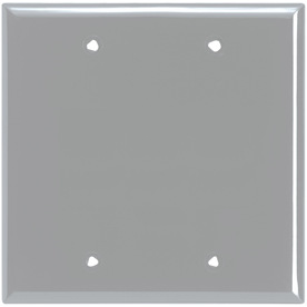 Cooper Wiring Devices 2-Gang Gray Blank Nylon Wall Plate 5137GY-BOX