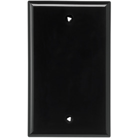 Cooper Wiring Devices 1-Gang Black Blank Nylon Wall Plate 5129BK