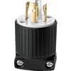 Cooper Wiring Devices 20-Amp 250-Volt Black 4-Wire Plug