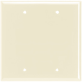 Cooper Wiring Devices 2-Gang Light Almond Blank Nylon Wall Plate 5137LA