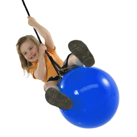 Swing-N-Slide Blue Swing