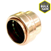 Mueller Proline 3/4-in x 3/4-in x 3/4-in Copper Push-Fit Cap Fitting
