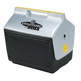 Igloo 14 Quart(S) Plastic Personal Cooler