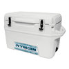Igloo 17.5-Gallon Plastic Chest Cooler