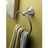 Moen Preston Spot Resist Brushed Nickel Wall Mount Towel Ring