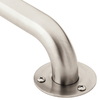Home Care by Moen 18-in Stainless Steel Grab Bar