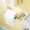 Moen Sage Spot Resist Brushed Nickel Surface Mount Toilet Paper Holder