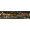 RoomMates Wild Horses Peel and Stick Wallpaper Border