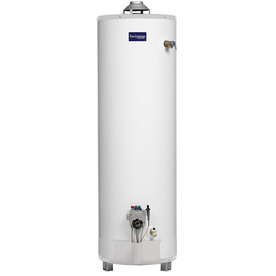 Envirotemp 40-Gallon 3-Year Tall Gas Water Heater (Natural Gas)